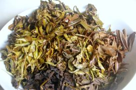 most of these teas are high mountain grown Nepali and harvested this year...